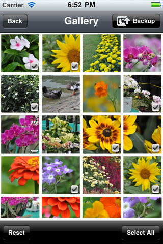 IDrive Photo Backup
