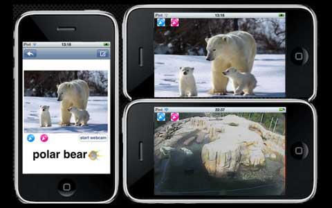 تطبيق Kids Zoo