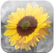 تطبيق iSplash Pro