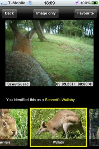 تطبيق Instant Wild