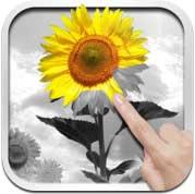 تطبيق PixelWorks لتعديل الصور