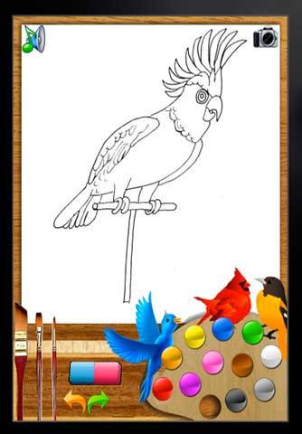 """تطبيق """"لون وتعلم الطيور"""""""
