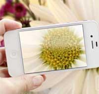 هل تعلم كيف تلتقط صور ماكرو بواسطة الايفون ؟