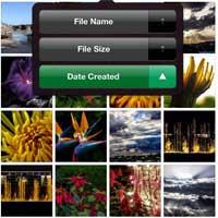 السيديا: Photo Organizer Pro أداة رائعة لترتيب البوم الصور