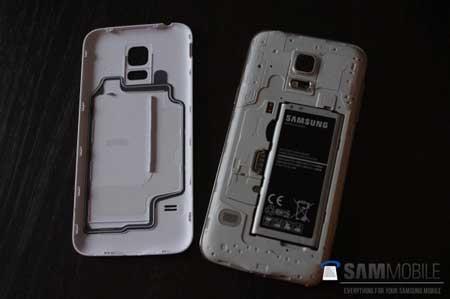 صورة مسربة لجهاز Galaxy S5 Mini