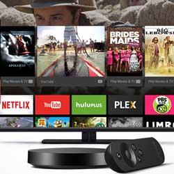 صورة جوجل تكشف عن جهاز Nexus Player بنظام أندرويد TV