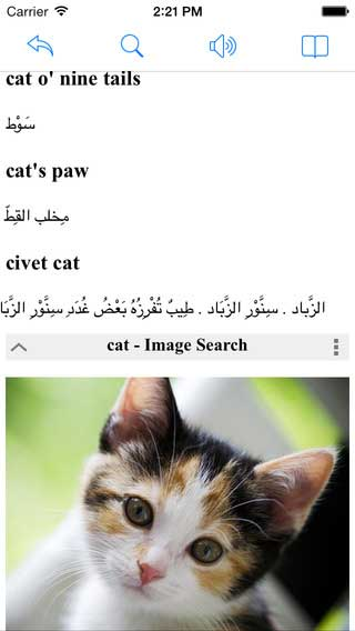 تطبيق Arabic English Dictionary قاموس عربي إنجليزي