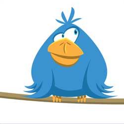 تابعني : زيادة متابعين تويتر