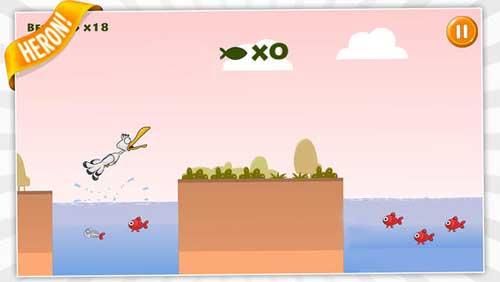 لعبة Fisher Birds HD طائر النورس الظريف