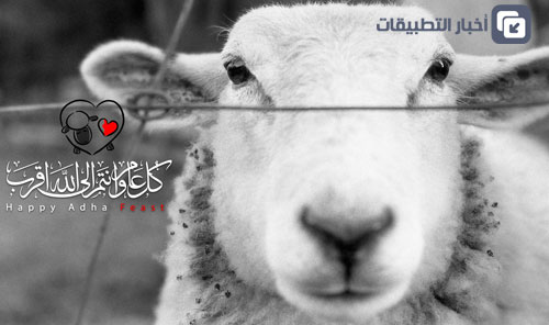 Photo of عيد اضحى مبارك – تبادلوا التهاني وتعرفوا على برنامجنا خلال العيد!