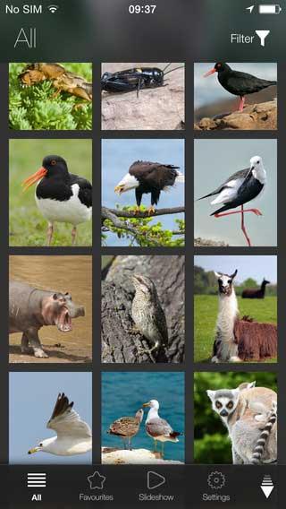تطبيق Animal Explorer: موسوعة علمية بصور وأصوات الحيوانات - جدا مميز