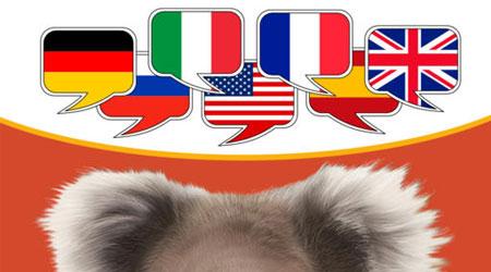 تطبيق القاموس المصور - لتعليم اللغة ودعم 9 لغات عالمية بعرض خاص ومميز لمستخدمينا