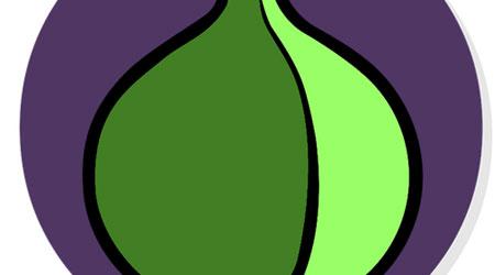 Photo of تطبيق Onion لحماية نفسك أثناء التصفح وتشفير البيانات – حماية خاصة، مفيد جدا للجميع