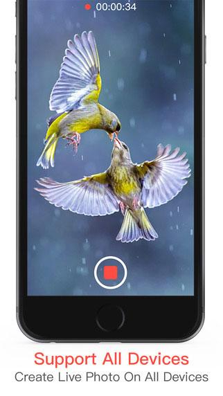 تطبيق Live Pic Maker لتحويل الصور أو فيديو إلى Gif أو صورة متحركة