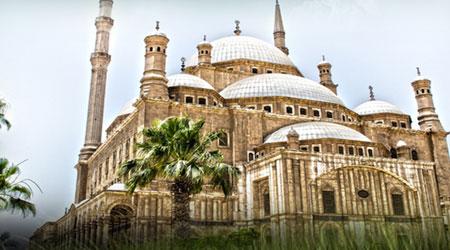 تطبيقات اليوم الـ 14 من شهر رمضان المبارك - باقة مطلوبة ومفيدة جدا التنوع عنوانها
