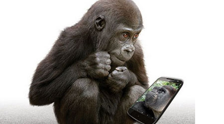 Photo of كل ما تود معرفته حول زجاج الحماية Corning Gorilla Glass 5 الجديد!
