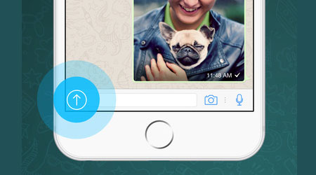 Photo of تحديث تطبيق واتس آب – دعم جميع مزايا iOS 10 الجديدة، تعرفوا عليها