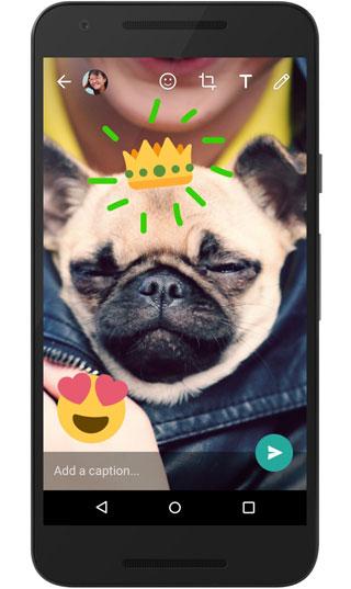 تحديث تطبيق واتس آب لدعم الرسم فوق الصور والفيديو