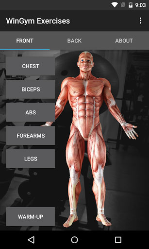 تطبيق WinGym Exercises مدربك لبناء العضلات