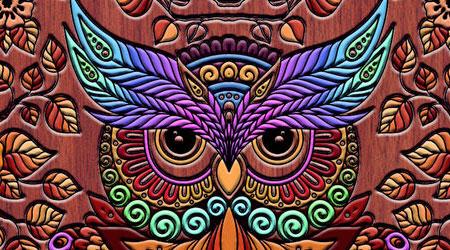 Photo of تطبيق Coloring Owl – قم بتزيين أغلفة هاتفك واصنع كوبك المميز كما تشاء !