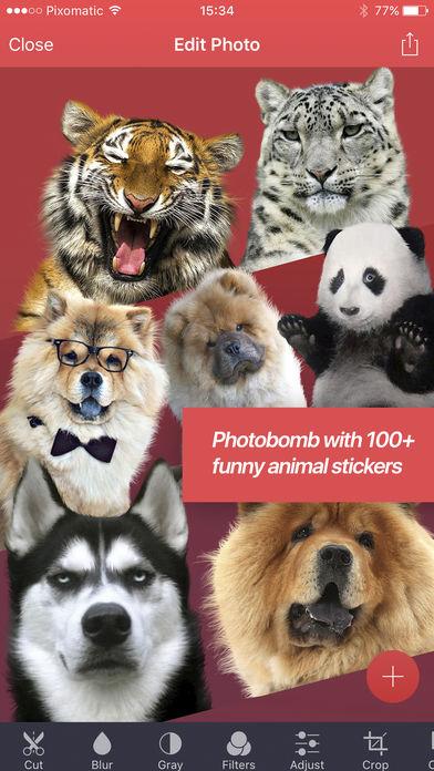 تطبيق Cut Photo Out لقص الصور وتبديل الوجوه وتحريرها باحترافية