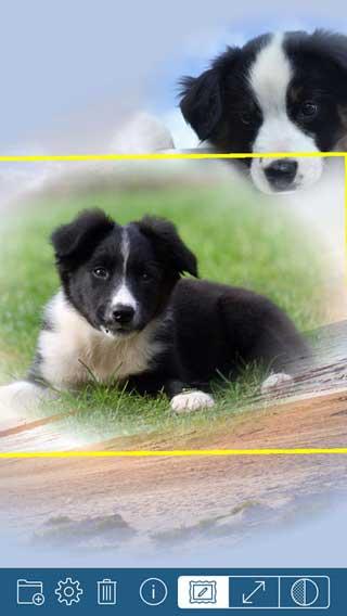 تطبيق PhotoTangler لدمج صورك باحترافية