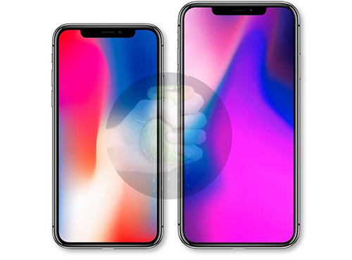 iPhone 6.1 LCD VS iPhone 6.5 OLED