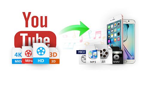 تستطيع تحويل صيغ الفيديو عبر النسخة الاحترافية