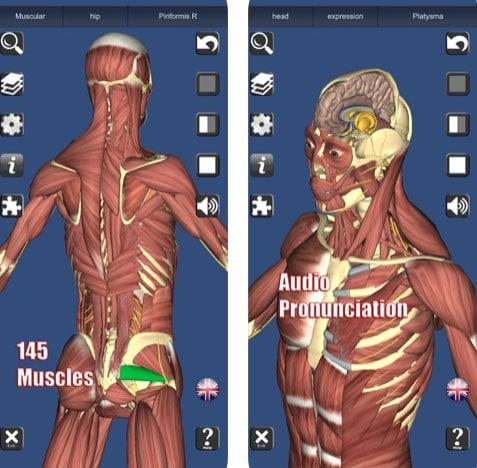 تطبيق 3D Anatomy لتعلم لتشريح