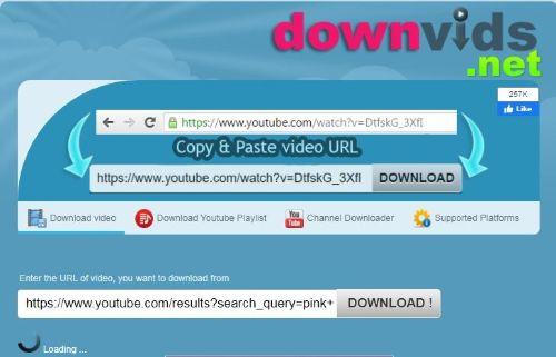 DownVids Site