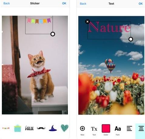 تطبيق Picture Perfect لتعديل الصور