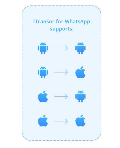 برنامج iTransor للواتس اب - نسخ ونقل محادثات واتس اب بين الأجهزة المختلفة