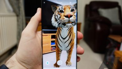 3D Animals AR