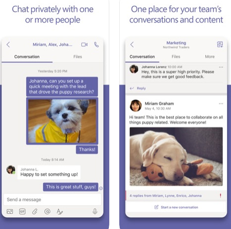 تطبيق Microsoft Teams لفرق العمل