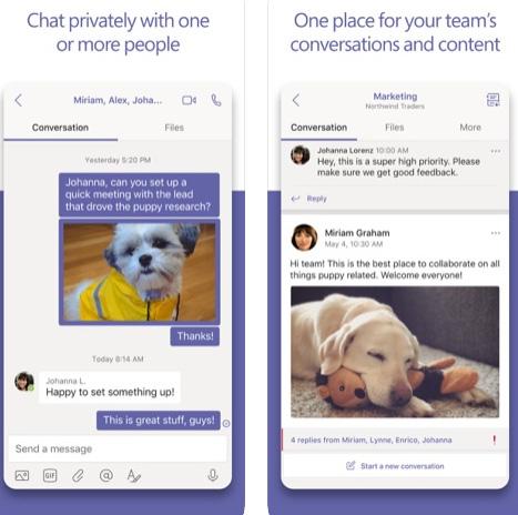 تطبيق Microsoft Teams لفرق العمل