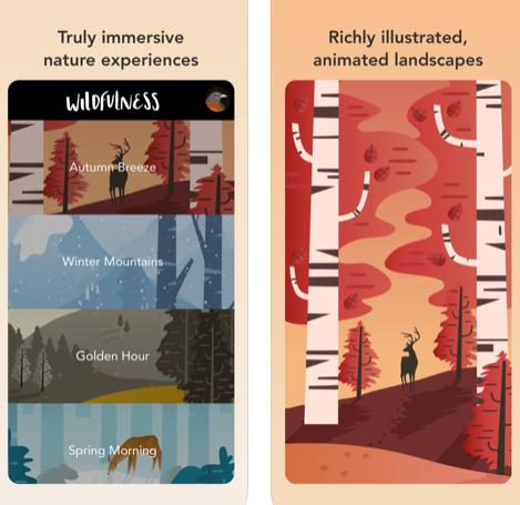 تطبيق Wildfulness للهدوء والتأمل