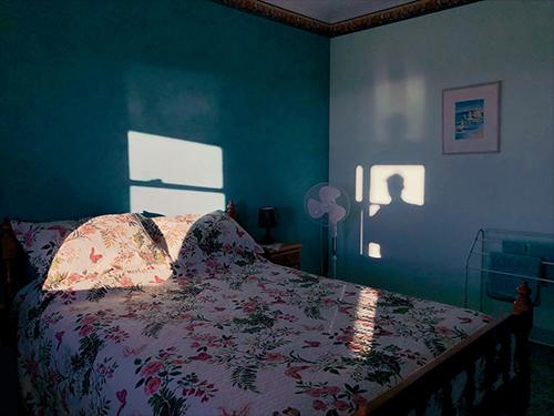 الصور الفائزة في مسابقة ابل للتصوير عبر الايفون 2020