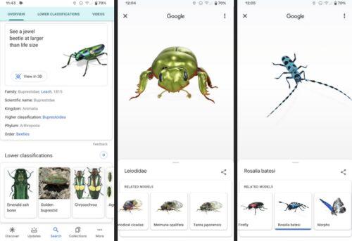 جوجل تتيح لك مشاهدة الحشرات بالحجم الحقيقي بالواقع المعزز من خلال AR Animals