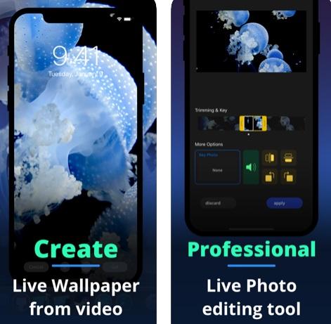 تطبيق Live+ لتحويل الفيديو إلى صور حية