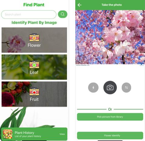 تطبيق FindPlant للتعرف على النباتات والزهور