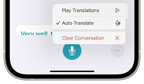 iOS 15 Translate Auto Translation