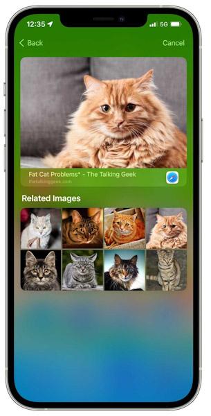 تحديث iOS 15 ميزة البحث سبوت لايت Spotlight البحث عن الصور