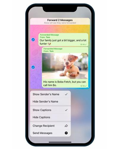 خيارات متعددة عند إعادة تمرير الرسائل في تيليجرام