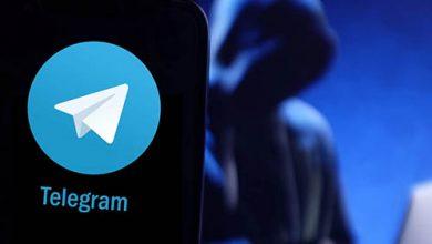 تيليجرام يشهد ارتفاعاً حاداً في نشاط مجرمي الإنترنت بنسبة 100%